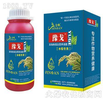 水稻专用深海鱼蛋白营养液肥-豫戈-金帆