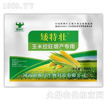 玉米控旺增产专用-矮特