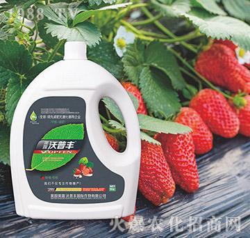 草莓专用氨基松脂菌露母