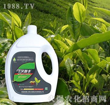 茶桑专用氨基松脂菌露母