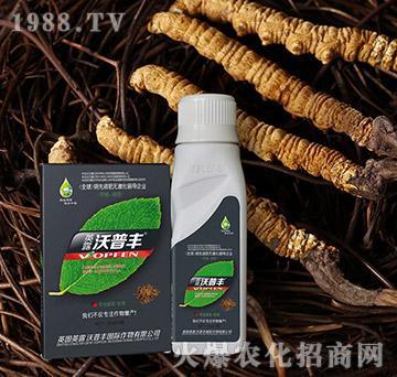 冬虫夏草专用氨基松脂菌