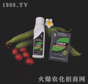 苦瓜丝瓜专用氨基松脂菌