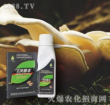 食用菌专用氨基松脂菌露