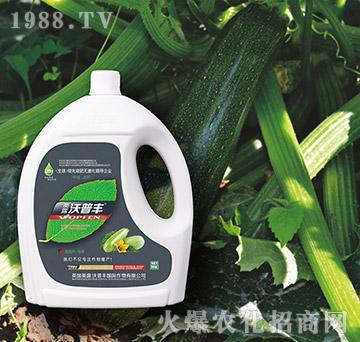 西葫芦专用氨基松脂菌露