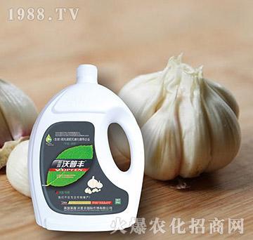 大蒜专用氨基松脂菌露母液滴灌冲施肥-沃普丰