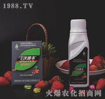 草莓专用冲施肥-沃普丰