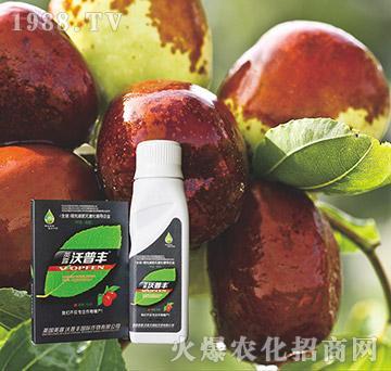 枣树专用冲施肥-沃普丰
