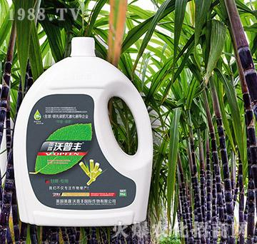 甘蔗专用冲施肥(桶)-