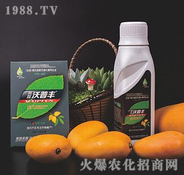 芒果专用冲施肥-沃普丰