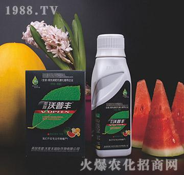 西瓜甜瓜专用冲施肥-沃