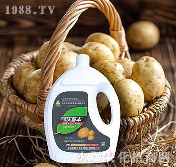 土豆专用氨基松脂菌露母液滴灌冲施肥-沃普丰