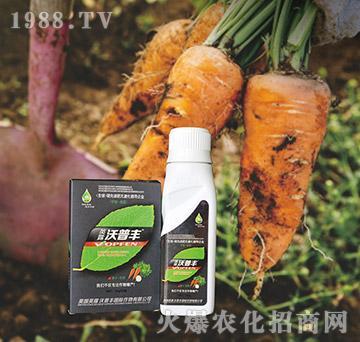 萝卜专用氨基松脂菌露母