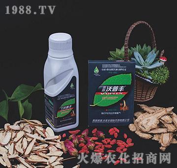 中草药专用氨基松脂菌露