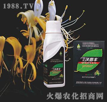 金银花专用氨基松脂菌露