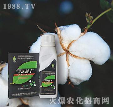 棉花专用氨基松脂菌露母液叶面肥-沃普丰