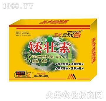 矮壮素-玉米四保管-国
