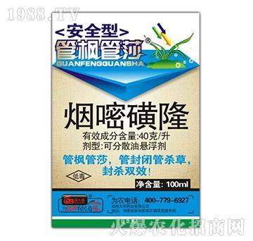 4%烟嘧磺隆-管枫管莎