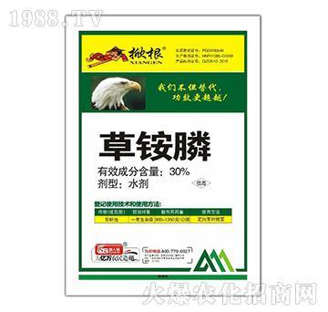 30%草铵膦(袋)-掀