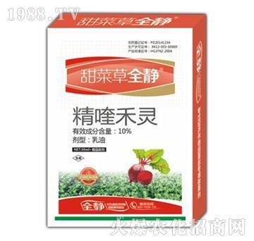 10%精喹禾灵-甜菜草