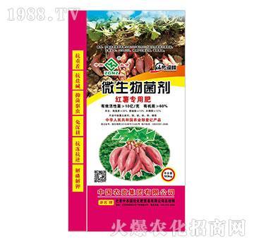 微生物菌剂-红薯专用肥-中农国控