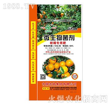微生物菌剂-柑橘专用肥