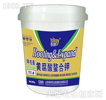 甲壳素黄腐酸螯合钾-泰