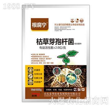 枯草芽孢杆菌-根腐宁-