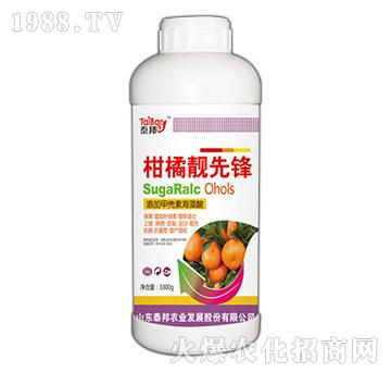 柑橘靓先锋-泰邦