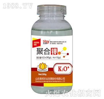 300g聚合钾-泰邦