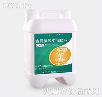 生根壮苗型含腐植酸水溶