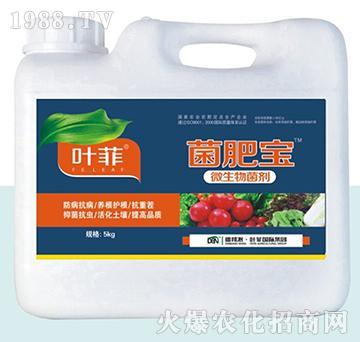 菌肥宝微生物菌剂-叶菲-德邦农