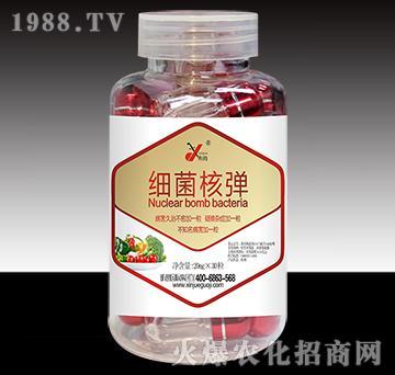 细菌核弹(新型微生物菌剂)-昕爵