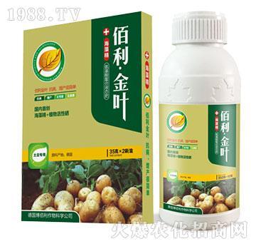 土豆专用-佰利・金叶-