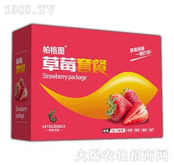 草莓套餐-柏格图-阿斯