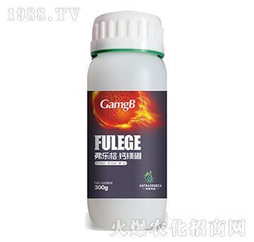 弗乐格钙镁硼-阿斯利康