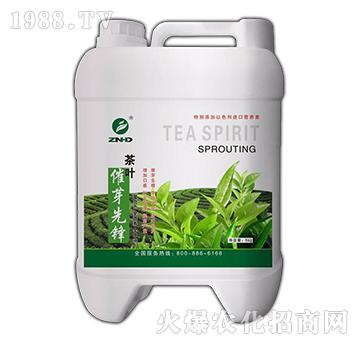 茶叶催芽先锋-中农恒大