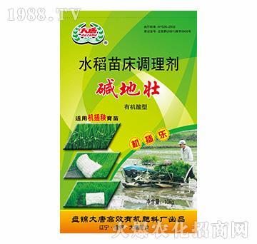 有机酸型水稻苗床调理剂-大唐精品