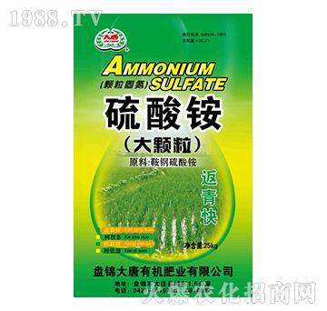 颗粒固氮型大颗粒硫酸铵-大唐精品