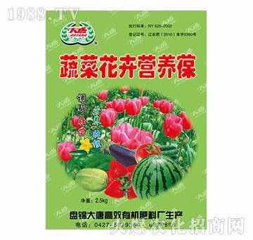 蔬菜花卉营养液-大唐精品