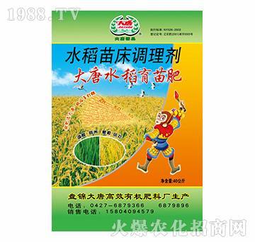 水稻苗床调理剂-大唐水稻育苗肥-大唐精品