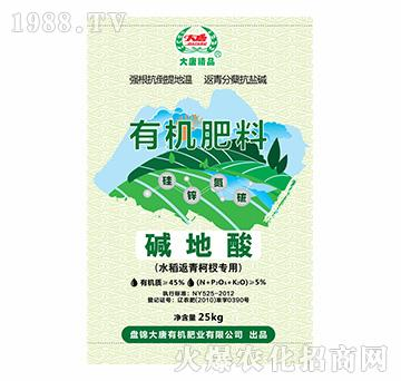 水稻返青柯杈专用有机肥料-碱地酸-大唐精品