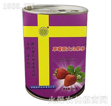 草莓膨大白果净-绿邦生物