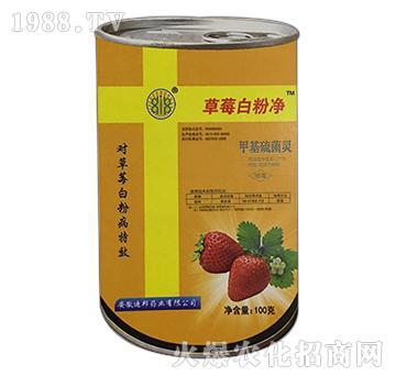 草莓白粉净-绿邦生物