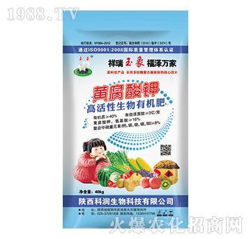 黄腐酸钾-高活性生物有机肥-科润生物