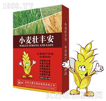 小麦壮丰安-小麦高产丰收必备伴侣-�m沃