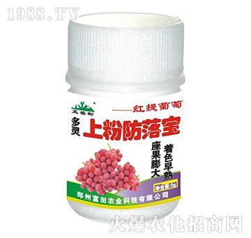 红提葡萄上粉防落宝-富田