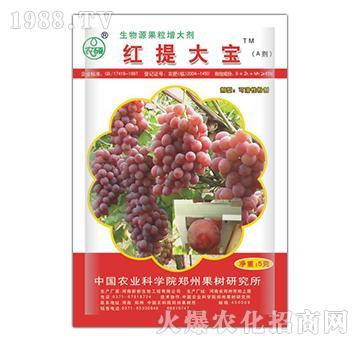 红提大宝-生物源果粒增