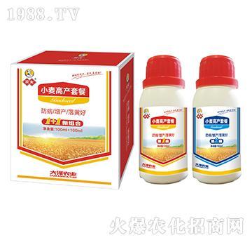 小麦高产套餐-欢夫-大泽农业