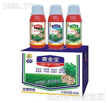花生高产套餐黄金宝-欢夫-大泽农业