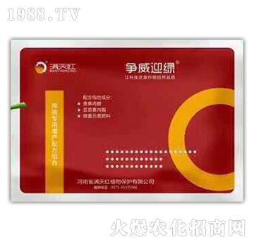 辣椒专用增产配方组合-争威迎绿-满天红